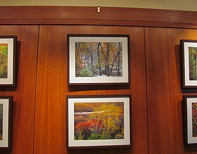 Traditional Picture Rail Hangers Brass The Gallery Systems